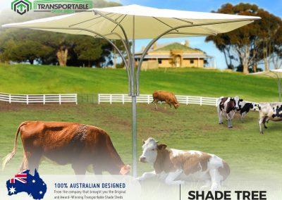 Transportable Sheds Gatton Plainland 19